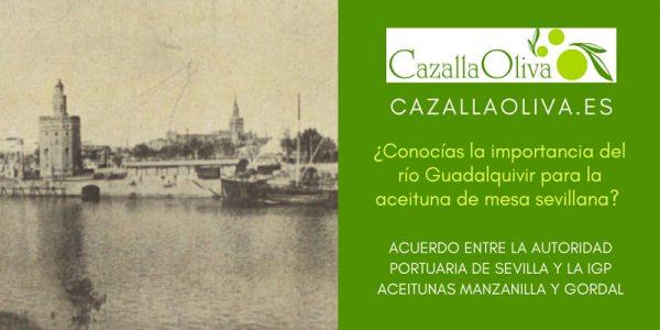 ¿Conocías la importancia del río Guadalquivir para la aceituna de mesa sevillana?